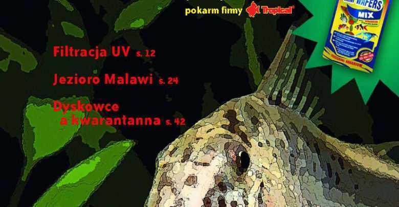 Okładka Magazyn Akwarium czasopismo 10/2008 miesięcznik akwarystyczny