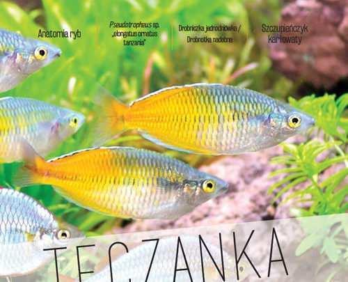 Okładka Magazyn Akwarium czasopismo 6-7/2016