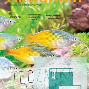 Okładka Magazyn Akwarium czasopismo 6-7-2016