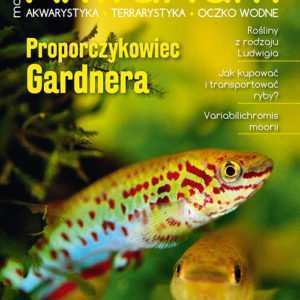 Magazyn Akwarium czasopismo 2/2019