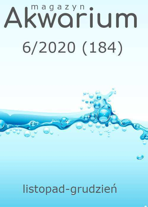 Maga\yn Akwarium czasopismo 6/2020
