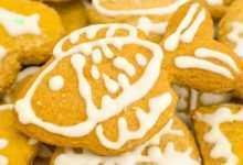 Photo of Polityka cookies Pet Publications Sp. z o.o.