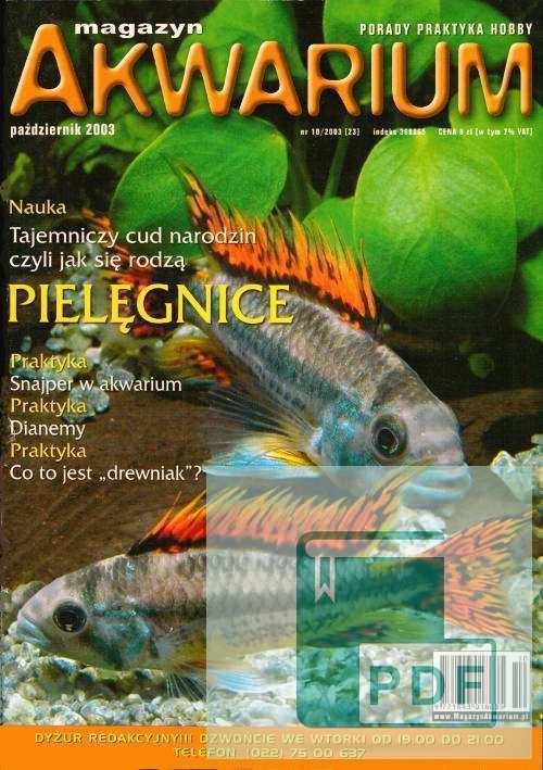Okładka Magazyn Akwarium czasopismo 10/2003