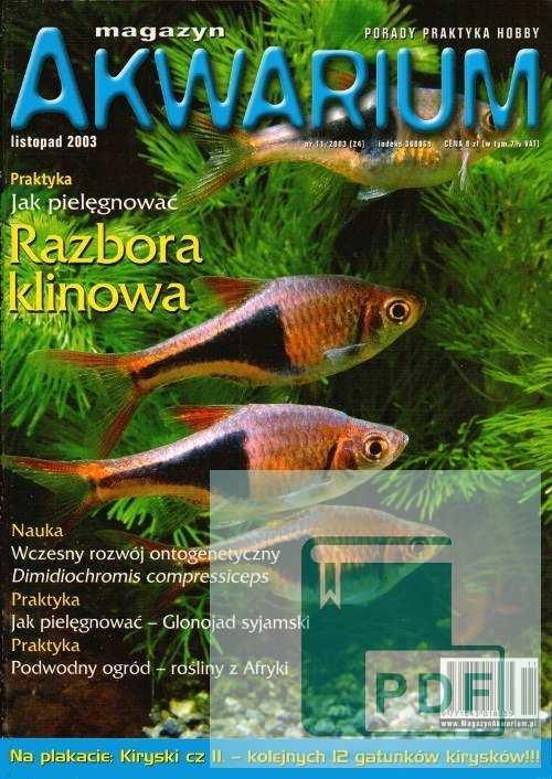 Okładka Magazyn Akwarium czasopismo 11/2003