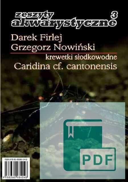 Caridina cantonensis