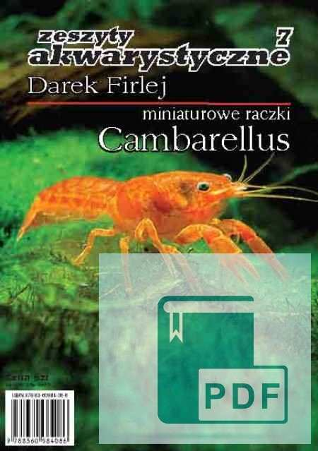 Miniaturowe raczki Cambarellus