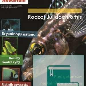 Okładka Magazyn Akwarium czasopismo 1/2011