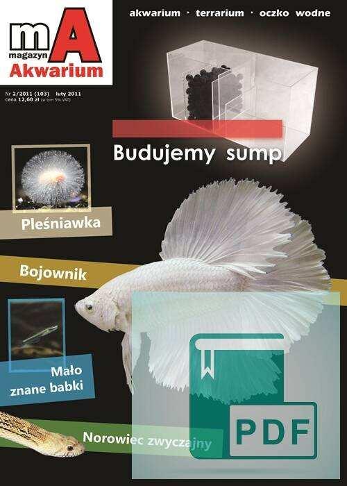 Okładka Magazyn Akwarium czasopismo 2/2011