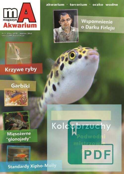 Okładka Magazyn Akwarium czasopismo 3/2011