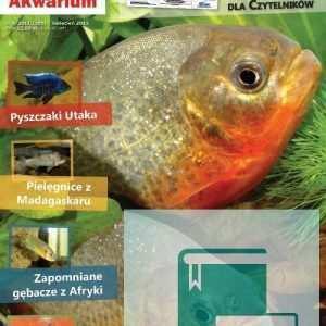 Okładka Magazyn Akwarium czasopismo 4/2011