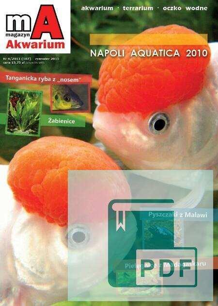 Okładka Magazyn Akwarium czasopismo 6/2011