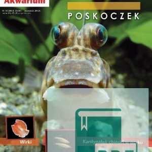 Okładka Magazyn Akwarium czasopismo 8/2011