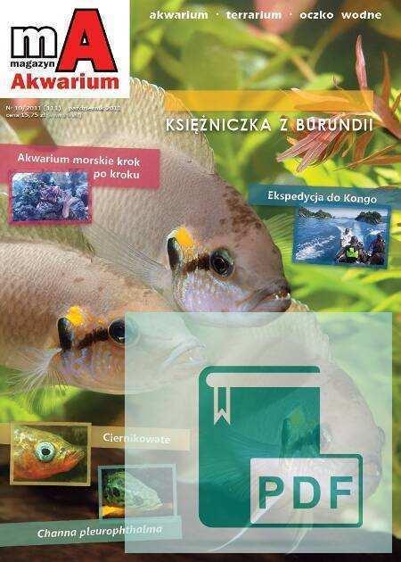 Okładka Magazyn Akwarium czasopismo 10/2011