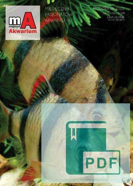 Okładka Magazyn Akwarium czasopismo 10/2012