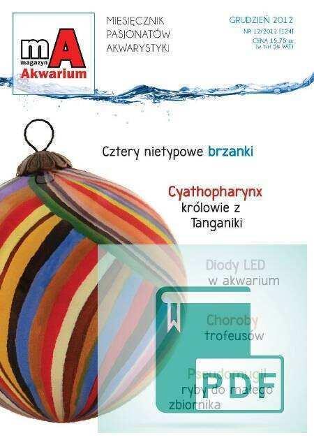 Okładka Magazyn Akwarium czasopismo 12/2012