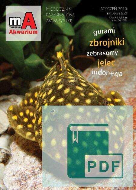 Okładka Magazyn Akwarium czasopismo 1/2013