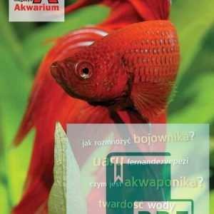 Andrzej Kociołkowski: The Art of the Planted Aquarium Hanower 2013 Jacek Klonowicz: Barwny świat neonów