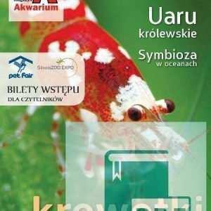 Okładka Magazyn Akwarium czasopismo 4/2013