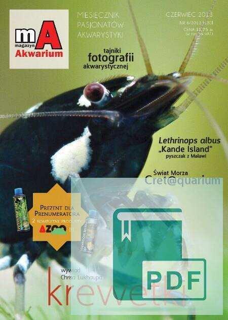 Okładka Magazyn Akwarium czasopismo 6/2013