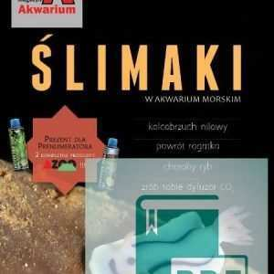 Okładka Magazyn Akwarium czasopismo 7-8/2013