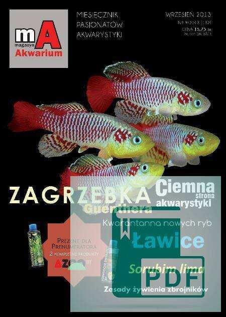 Okładka Magazyn Akwarium czasopismo 9/2013