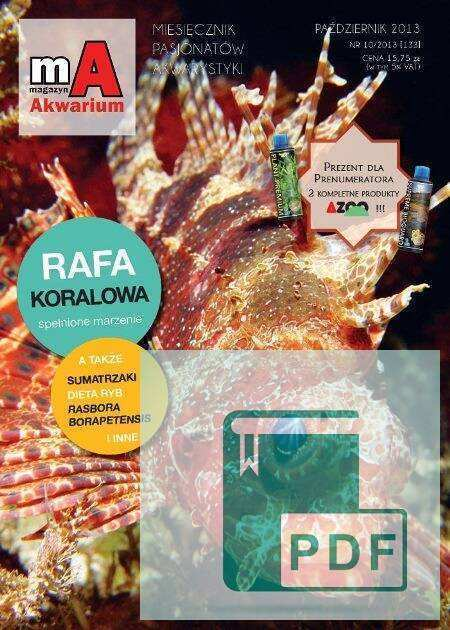 Okładka Magazyn Akwarium czasopismo 10/2013