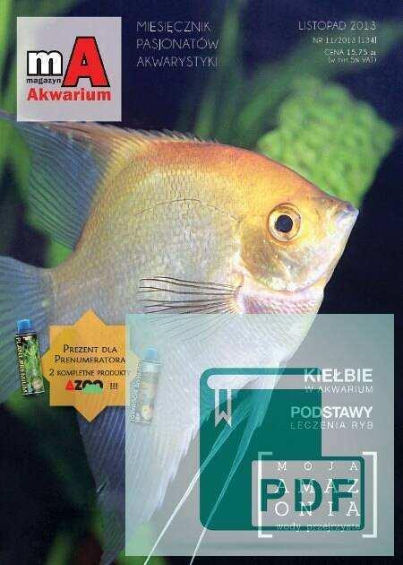 Okładka Magazyn Akwarium czasopismo 11/2013