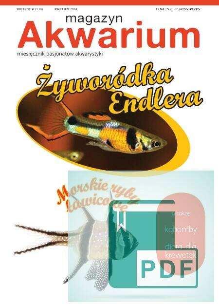 Okładka Magazyn Akwarium czasopismo 4/2014
