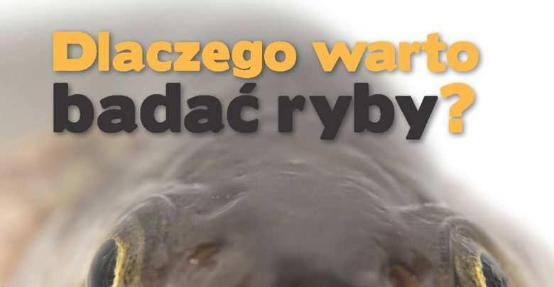 Okładka Magazyn Akwarium czasopismo 5/2014