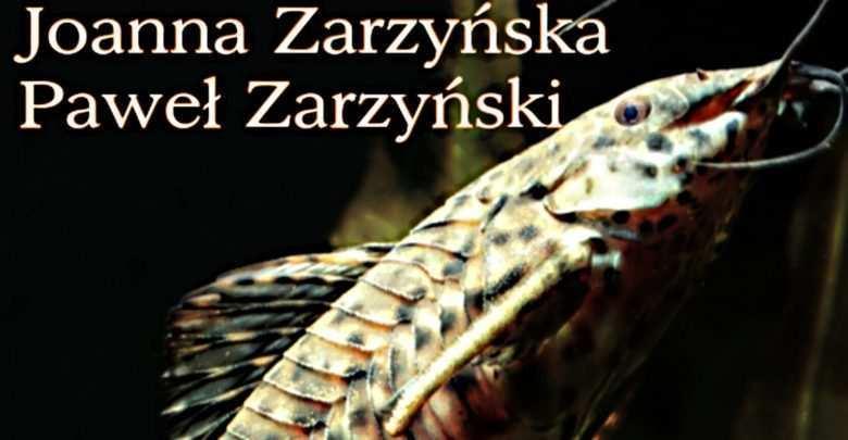 Kiryskowate Callihthyidae