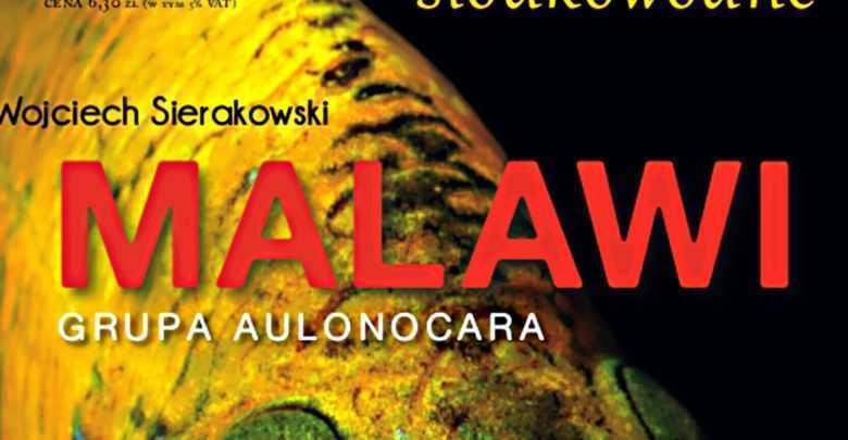 Malawi - grupa Aulonocara