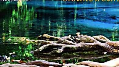 Photo of Zeszyt Akwarystyczny nr 11-12/2014 (56): Akwarium biotopowe – Ameryka Południowa