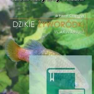 Dzikie żyworódki w akwarium