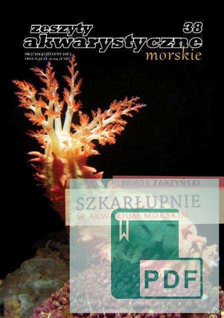 Zwierzęta morskie - szkarłupnie w akwarium morskim