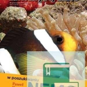 W poszukiwaniu Nemo