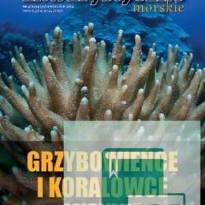Grzybowieńce i koralowce miękkie w akwarium morskim