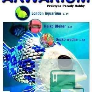 Okładka Magazyn Akwarium czasopismo 4/2007