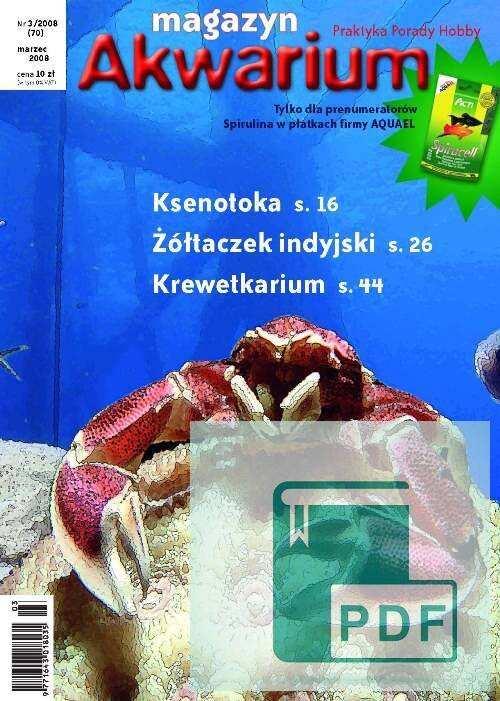 Okładka Magazyn Akwarium czasopismo 3/2008