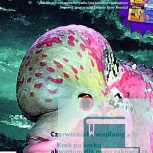 Okładka Magazyn Akwarium czasopismo 4/2008