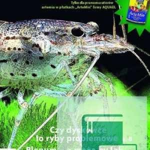 Okładka Magazyn Akwarium czasopismo 6/2008
