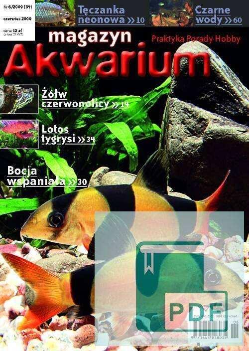 Okładka Magazyn Akwarium czasopismo 6/2009