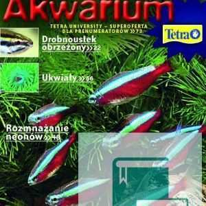 Okładka Magazyn Akwarium czasopismo 7/2009