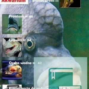 Okładka Magazyn Akwarium czasopismo 6/2010