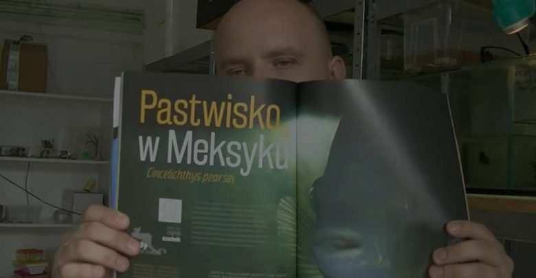 Magazyn Akwarium czasopismo rezenzja