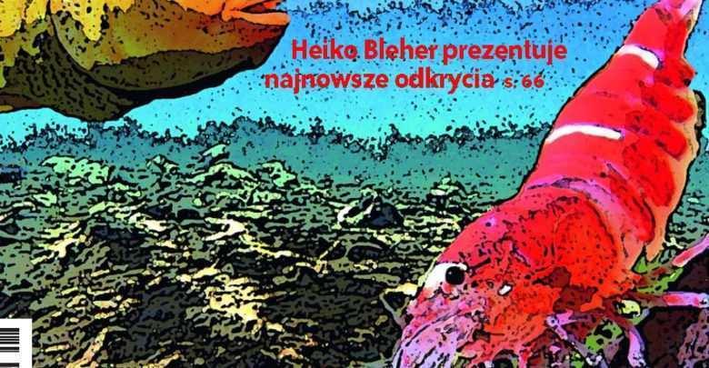 Okładka Magazyn Akwarium czasopismo 9/2008 miesięcznik akwarystyczny