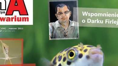 Okładka Magazyn Akwarium czasopismo 3/2011 miesięcznik akwarystyczny