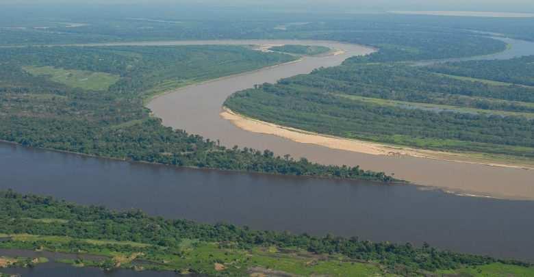 Akwarium biotopowe. Rio Guapore