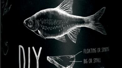 Photo of GEL FORMULA – Pokarmy dla ryb w formie galaretek DIY