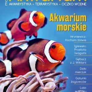 Magazyn Akwarium czasopismo 4/2018