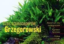 Magazyn Akwarium czasopismo 2/2018